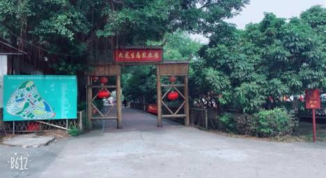 深圳九龙生态园亲子DIY一日游